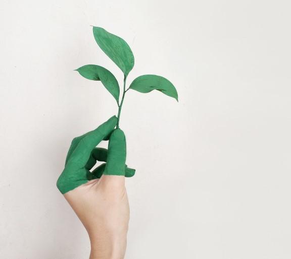 Duurzaam investeren nog steeds in de lift picture
